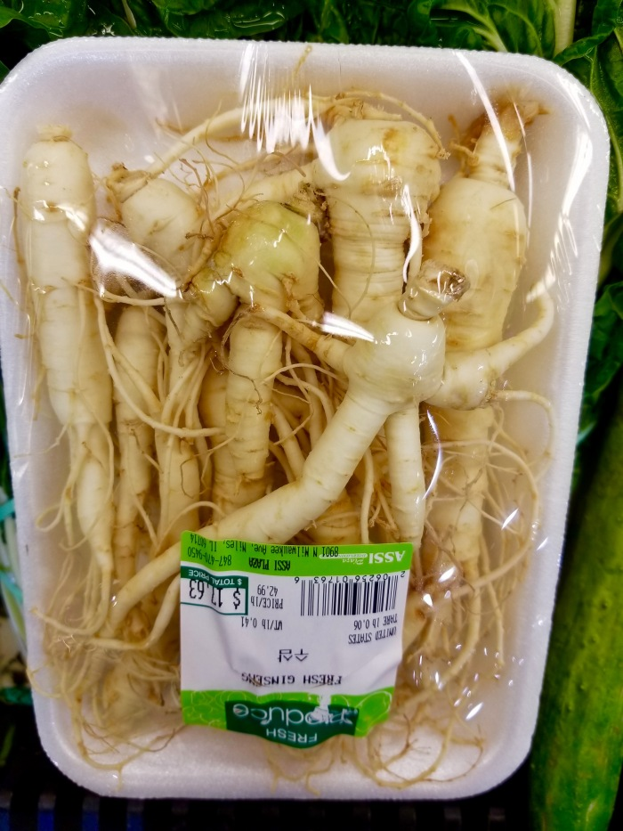 Ginseng root or little man stuck in plastic